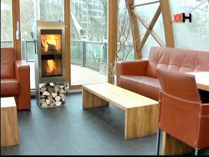 Piec koza na drewno dwukomorowy w salonie Xeoos